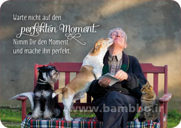 عکس نوشته های آلمانی با معنی فارسی| بامبو